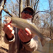 Rainbow Trout at Willow Creek